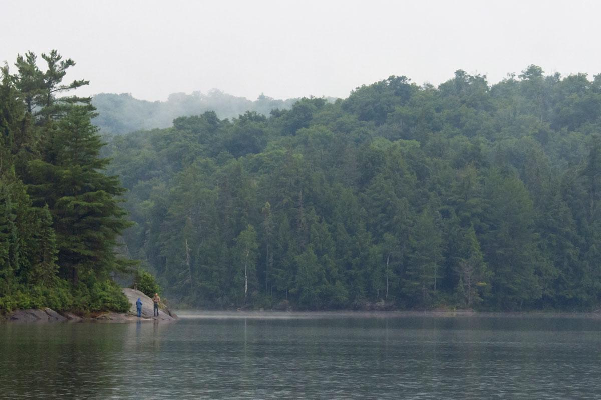 Queer Lake shoreline Algonquin Park July 2021 - 1