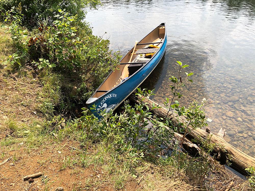 Ryan Lake Algonquin Park Campsite 11 canoe landing