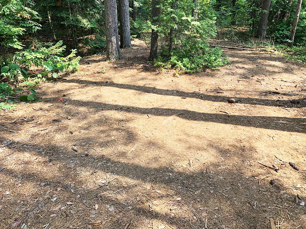 Ryan Lake Algonquin Park Campsite 11 tent spot 2