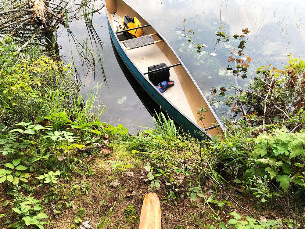 Ryan Lake Algonquin Park Campsite 2 canoe landing