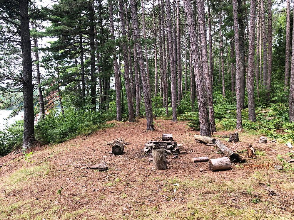 Ryan Lake Algonquin Park Campsite 3 interior of the campsite 1