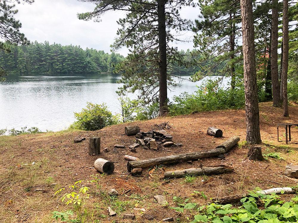 Ryan Lake Algonquin Park Campsite 3 interior of the campsite 2
