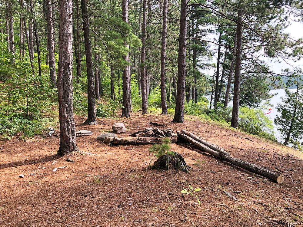 Ryan Lake Algonquin Park Campsite 4 interior of the campsite 1