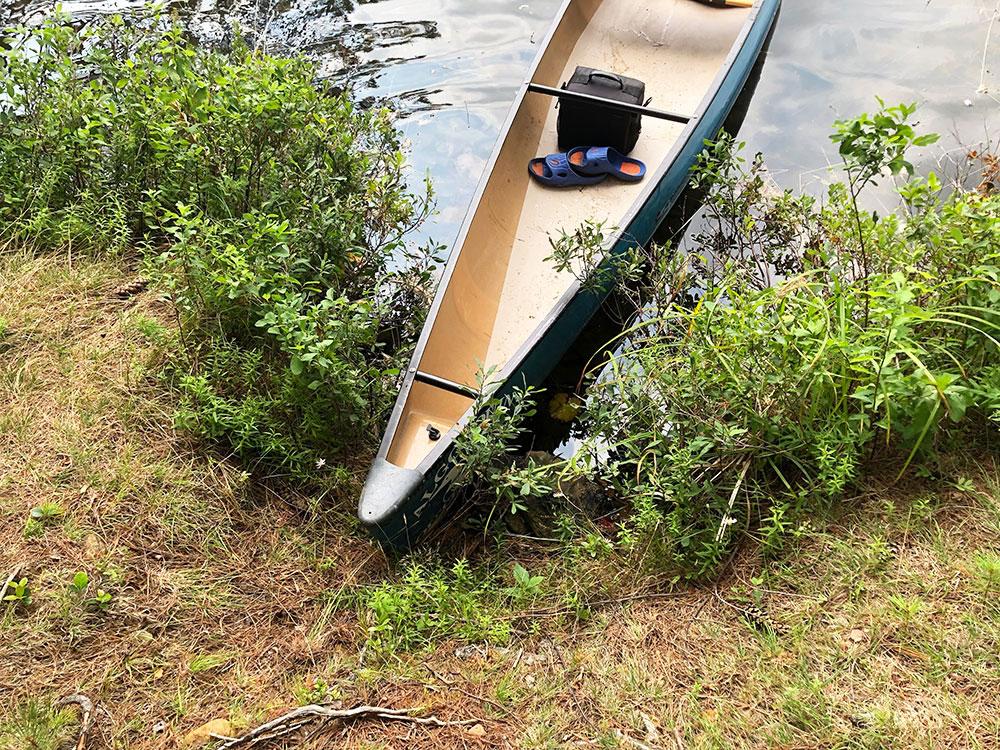 Ryan Lake Algonquin Park Campsite 8 canoe landing