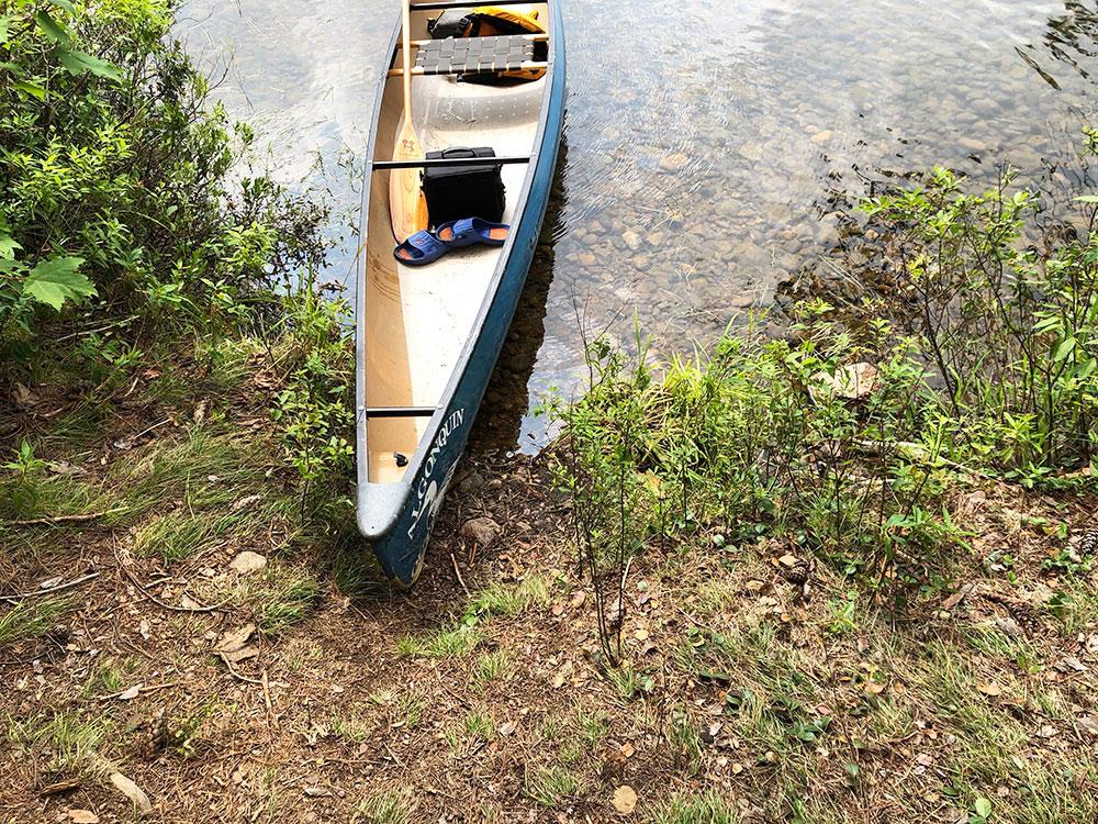 Ryan Lake Algonquin Park Campsite 9 canoe landing