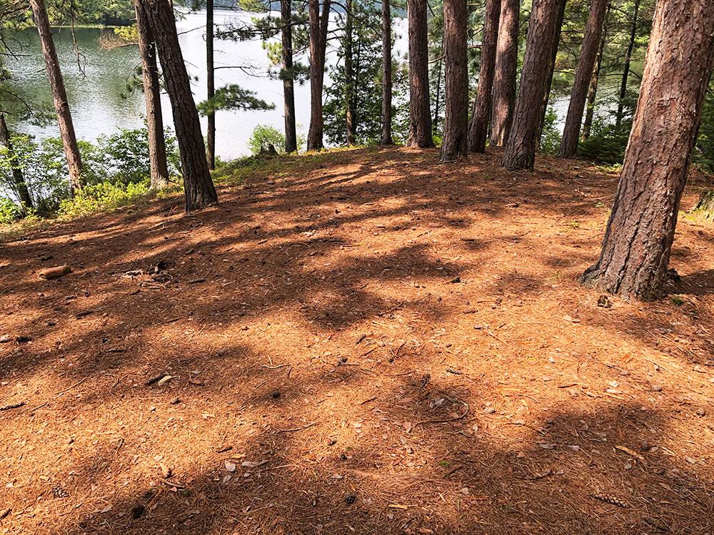 Ryan Lake Algonquin Park Campsite 9 tent spots