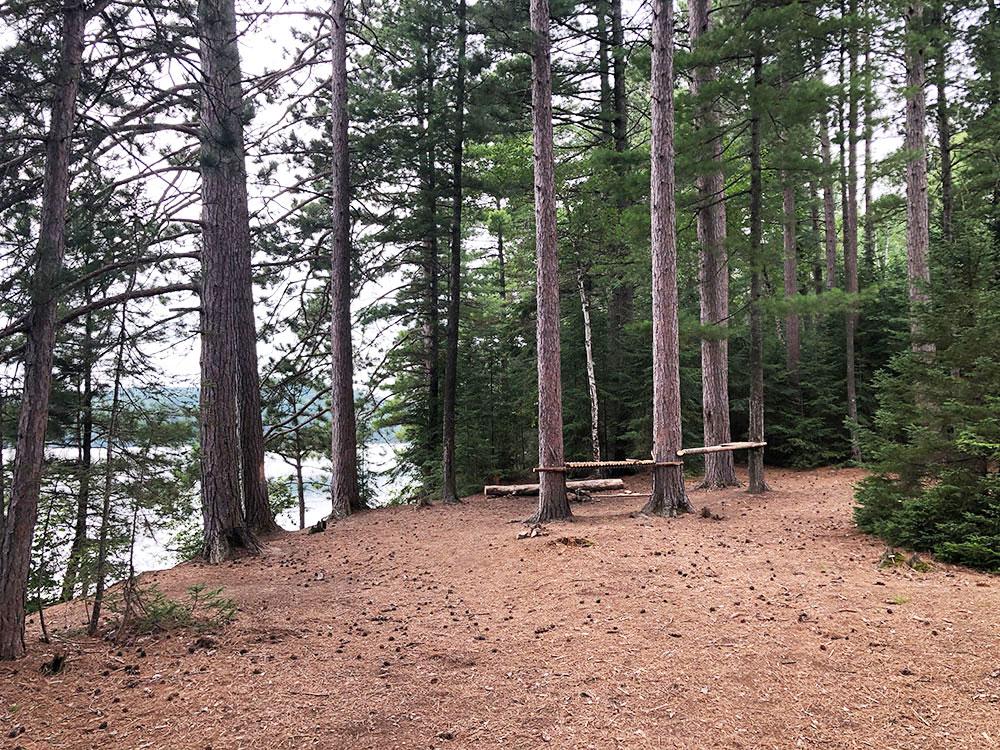 Shirley Lake Algonquin Park Campsite 1 interior of the campsite 2
