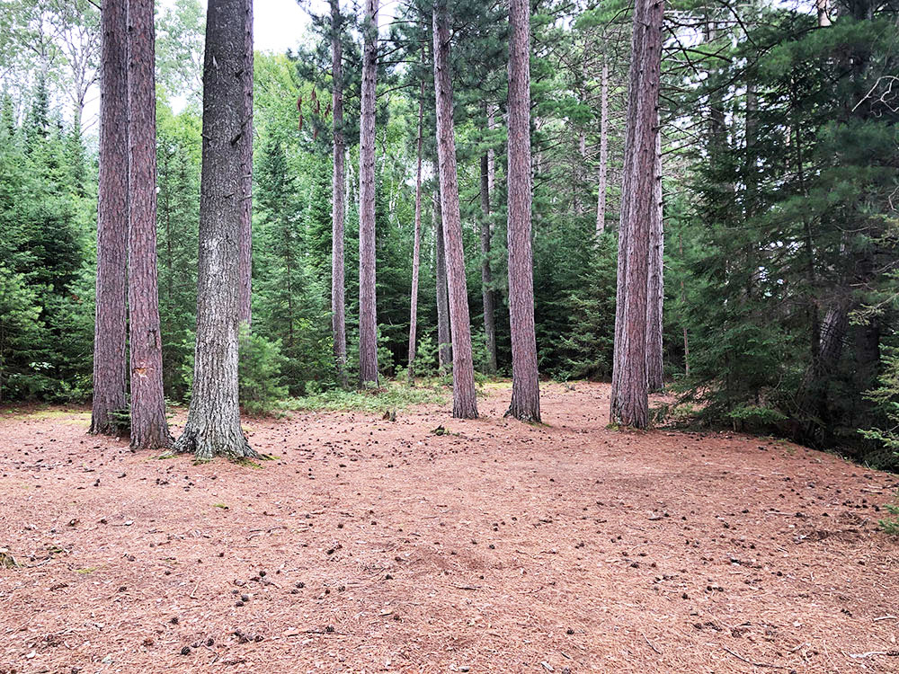 Shirley Lake Algonquin Park Campsite 1 tent spot 2