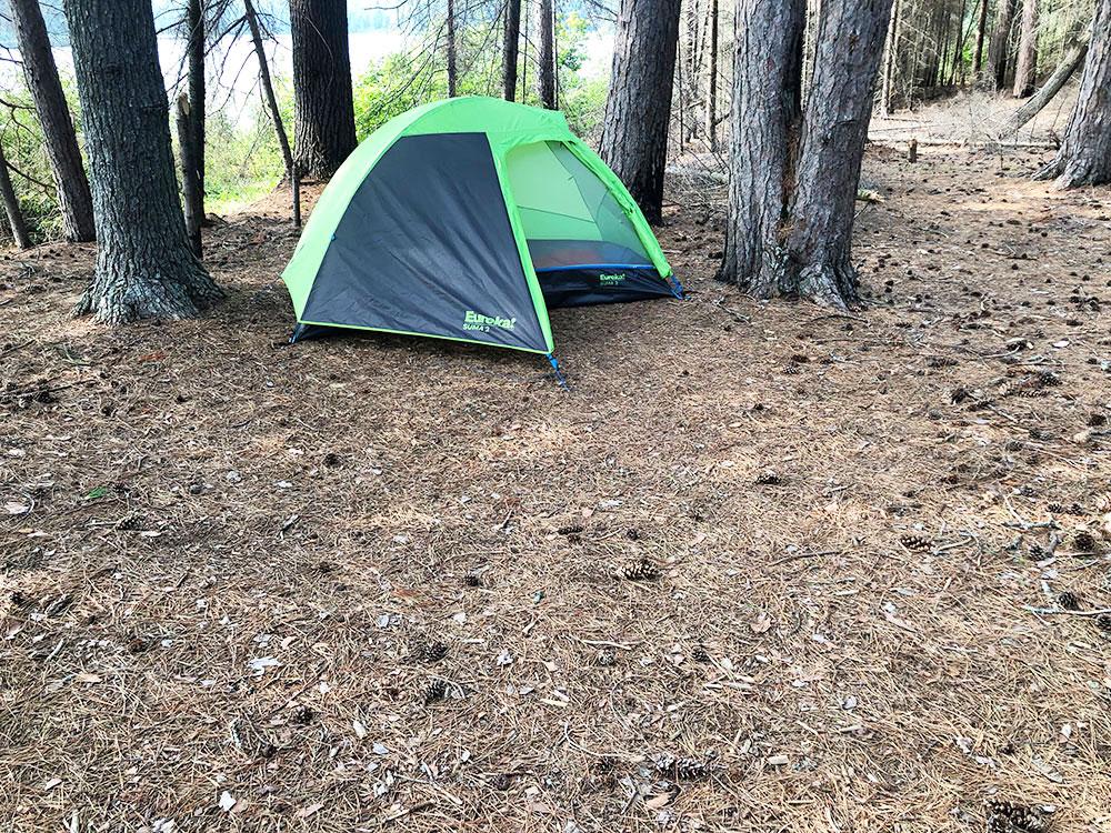 Shirley Lake Algonquin Park Campsite 3 tent spot 2