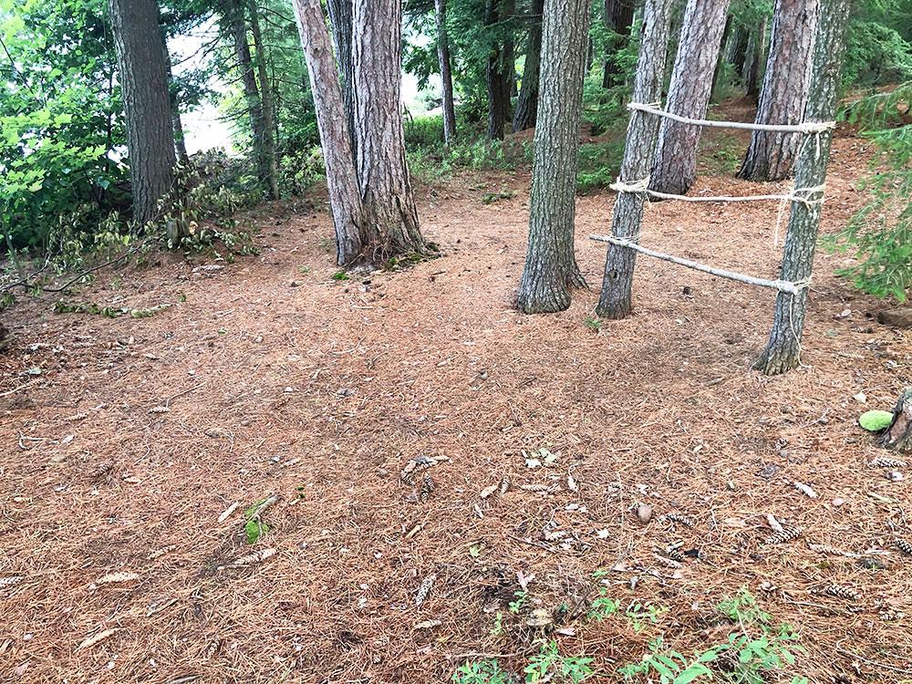 Shirley Lake Algonquin Park Campsite 5 tent spot 3