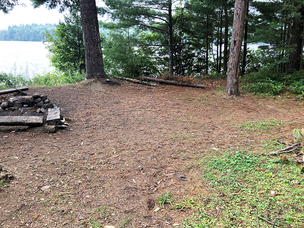 Shirley Lake Algonquin Park Campsite 6 tent spot 4